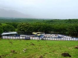 For sale, beautiful 1,607 ha Cattle and Wood Ranch with in Bagaces Guanacaste