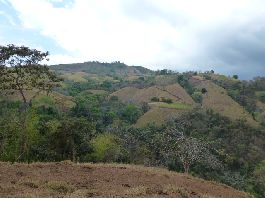 Emigrants property - 18,000 m2 farm at a bargain price, in the mountains of the Nicoya Peninsula