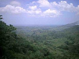 For sale, Top Farm, 44 ha farm with a view of the sea, in Rio Frio on the Nicoya Peninsula