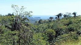 For sale, 35 hectares Finca in Guanacaste, with stunning views of the Pacific Ocean
