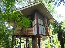 For sale, tree house near the beach Samara