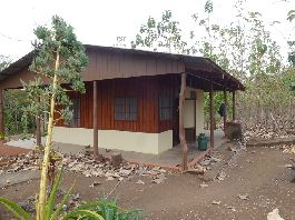 For sale teak farm with 26 ha and house in Carmona