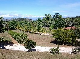 For sale 14 plots near the Gulf, Playa Naranjo