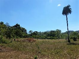 For sale 2,5 acres finca in Santa Cruz