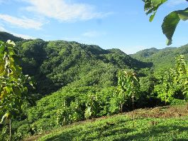 For sale 11 Building land near Nambí, Nicoya Peninsula