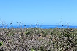 For sale, Lot of 5,499 m2 with beautiful views and near the sea in Playa San Juanillo
