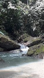 Dream farm with 66 ha on the outskirts of Cahuita, with river impetus, waterfalls, springs, jungle, etc.