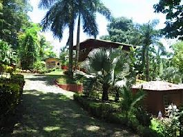 Caribbean house with botanical garden and 11,188 m2 plot 4 km from the sea for sale