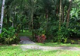 Building plots near the dream beach at Punta Uva for sale