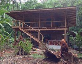 For sale, small paradise with tropical wooden house, surrounded by beautiful nature at Hone Creek-Cahuita