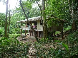 Fire sale house with guest house and 3.5 ha of land near the beach Cocles