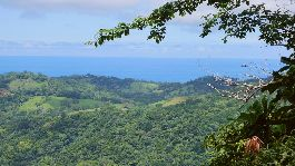 Building plot 5150m2 with fantastic views of the Pacific Ocean and mountains near Samara in a finca residential complex with river, hiking trails, wat