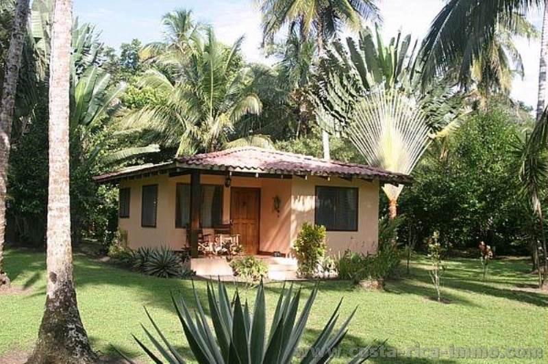 Turtle Beach Lodge 55 Room Eco For In Tortuguero