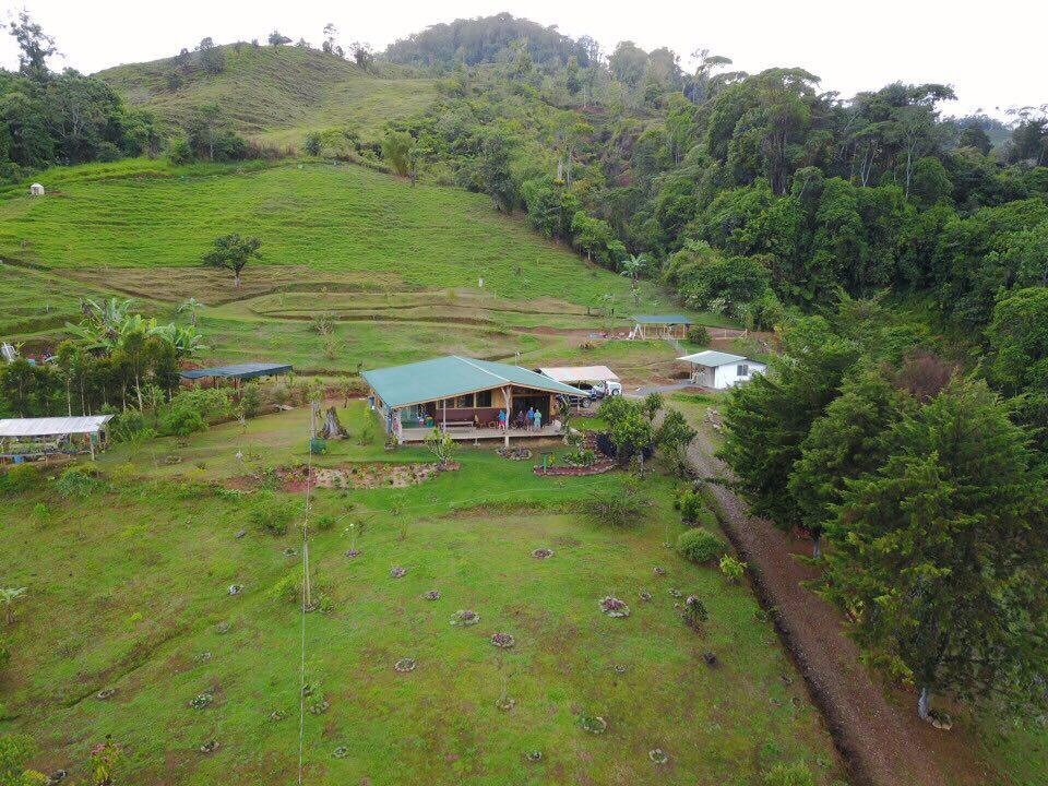 For sale, 4 9 ha farm with house, vegetable garden for self-catering
